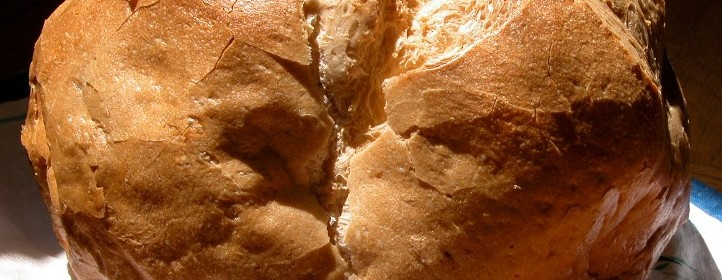 Nunca he visto el justos mendigando pan