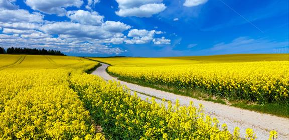 Oración para abrir los caminos II - la Palabra de Dios para hoy