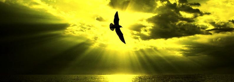 Salmo 27 - liberación de la oración - la Palabra de Dios para hoy